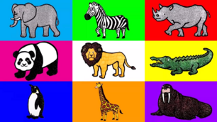 HED Wild Animals