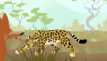 Leopard-wild-kratts