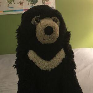 Sunbear Stuffed Animal, Sun Bear Animals Wiki Fandom