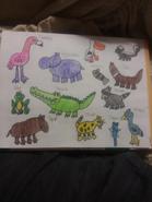 Swamp Animals