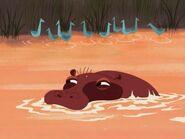 Hippopotamus-samurai-jack