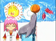 Bobobo-bo-bo-bobo Sea Lion