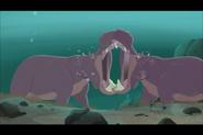 Hippopotamus-wild-kratts