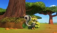 Skunk pdp