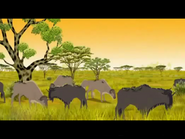 Blue-wildebeest-kirikou