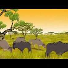 Blue-wildebeest-kirikou.png