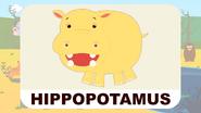 BluePhant Hippopotamus