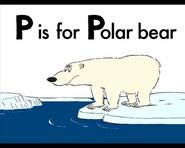ABCD Polar Bear