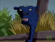 TWT Panther