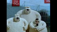 Creature Comforts Polar Bears