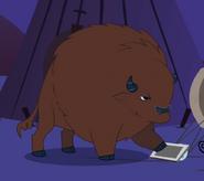 Serious Buffalo