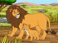 Lion-go-diego-go