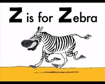 ABCD Zebra