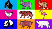 HED Wild Animals 2