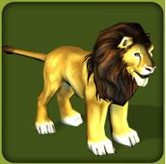Lion-zoo-tycoon
