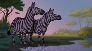 Plains-zebra-fantasia-2000