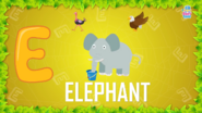 Baby Time Elephant