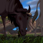 Blue-wildebeest-the-lion-king.jpg