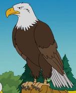 Bald-eagle-the-simpsons