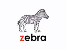 LSS Zebra