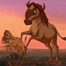 Blue-wildebeest-the-lion-king-2.jpg