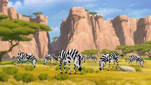 Plains-zebra-the-lion-guard