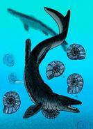 Mosasaurus hoffmannii and Parapuzosia restoration