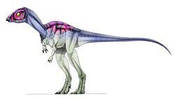 Micropachycephalosaurus.jpg