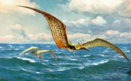 Reconstruction of Pteranodon flying at sea