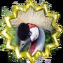 Advanced Ornithologist I