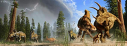 Daspletosaurus hunting ceratopsians illustration