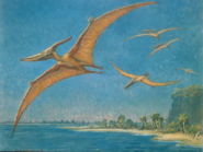 Pteranodon painting by Charles R. Knight