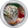 Intermediate Herpetologist II