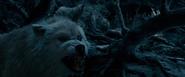 BatB 2017 Wolves