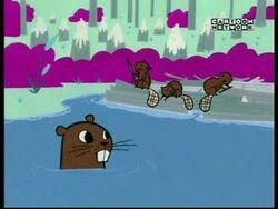 PPG Beavers.jpg