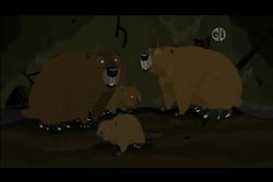 North American Beaver (Wild Kratts).png