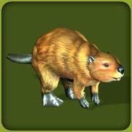 American Beaver (Blue Fang)