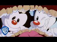 Animaniacs - The Worst Dentists - Classic Cartoon - WB Kids