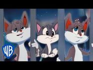 Animaniacs - Humans Don't Mean Much to Me Song - Classic Cartoon - WB Kids