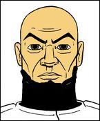 Assassin Beard