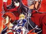 Fate/stay night (Novel)