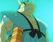 Gavel Rhino