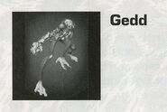 Gedd from Animorphs Shattered Reality
