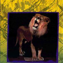 10 meet stars animorphs bongo lion.jpg