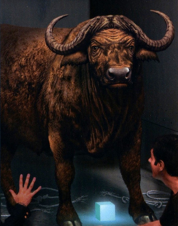 African Cape Buffalo.png