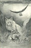 Cassie morphed as squirrel dodging a fox The Message Japanese illustration