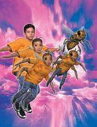 Marco morphing Honeybee