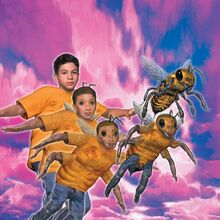 Marco morphing Honeybee.jpg