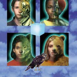 List of Animorphs books