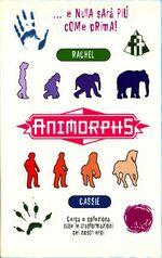 Animorphs 4 the message italian stickers adesivi.jpg